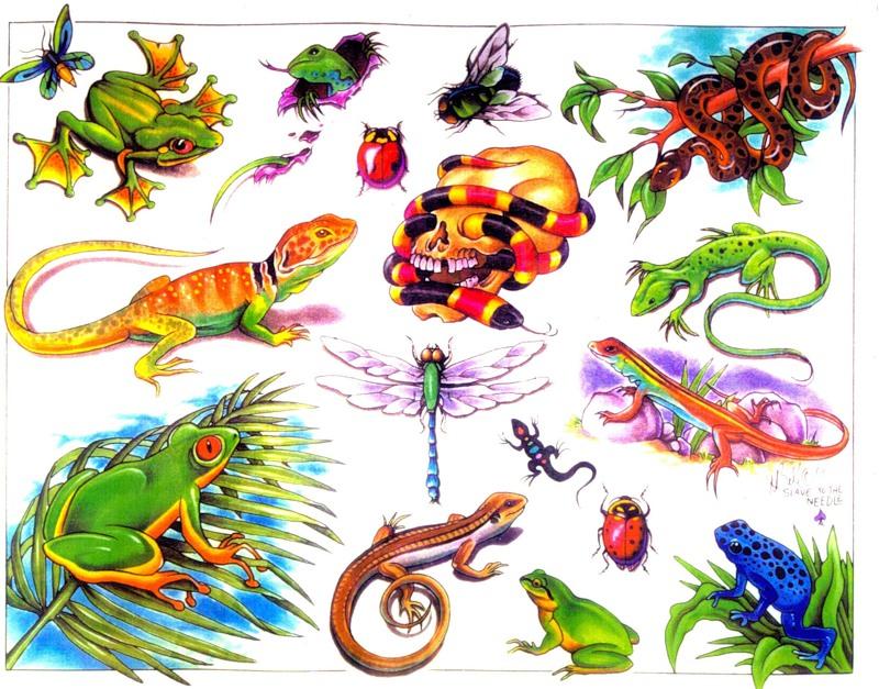 Татуировки животных tattoo animals